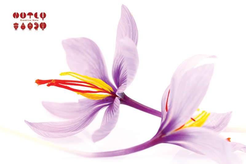 Why nutly uses saffron in its products